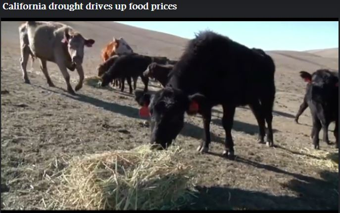2014 02 27 California drought drives up food prices about 15 percent