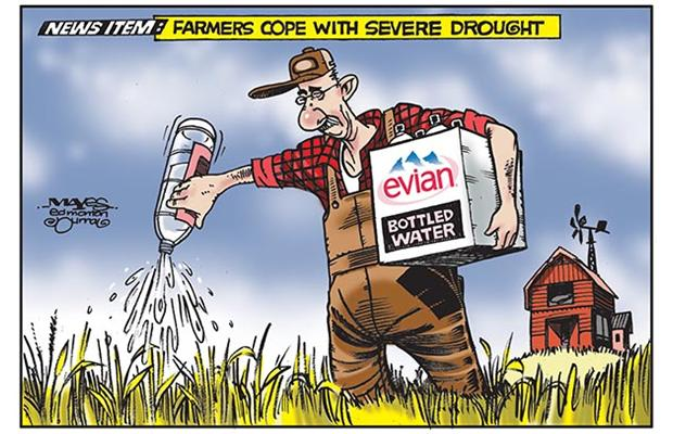 2015 07 22 alberta farmers cope with severe drought