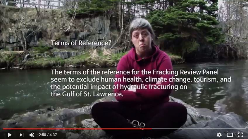 2016 06 02 snap of NLHFRP terms of reference in Dont frack NL musical submission to NLHFRP and petroculture 2016